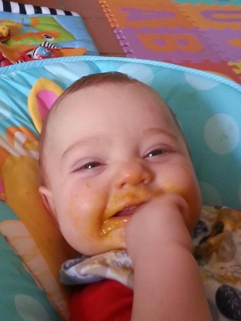 alex food